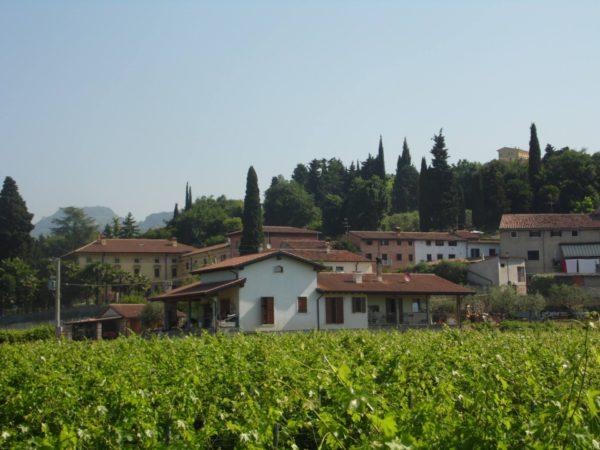 Uitzicht Crosarola wijnhuis