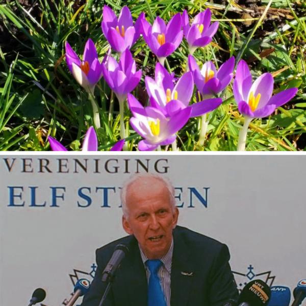 Nog Even Volhouden Box lente Wijndivas krokus elfstedentocht