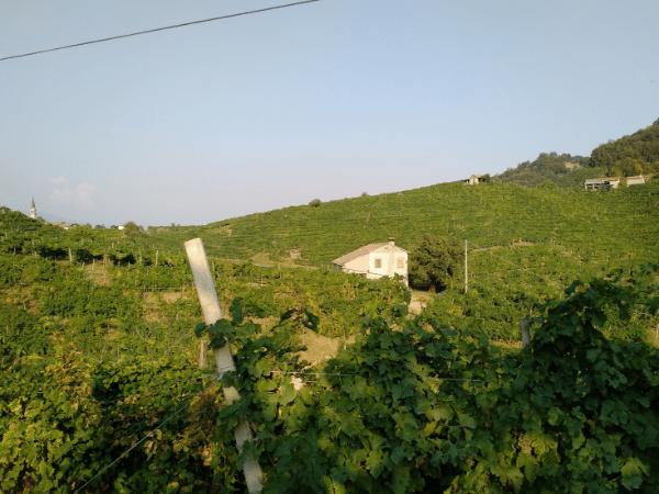 Reis mee.. door Italië naar het Prosecco-gebied