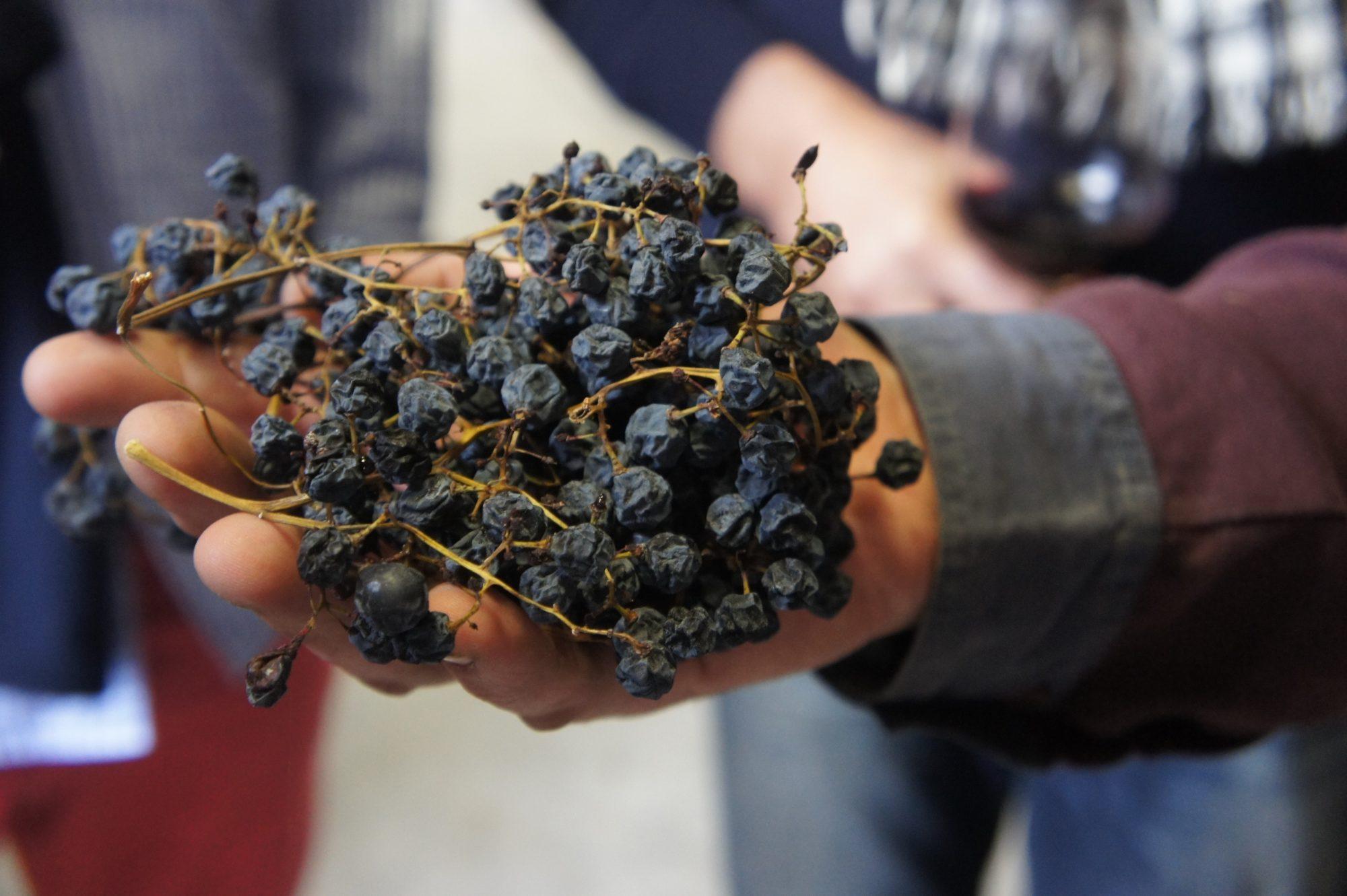 Amarone gedroogde druiven